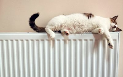 Heating Chemical Power Flush